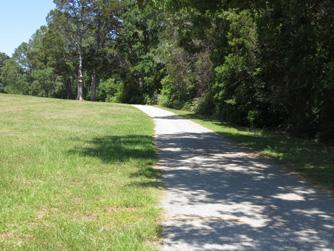 Walk Jog 11